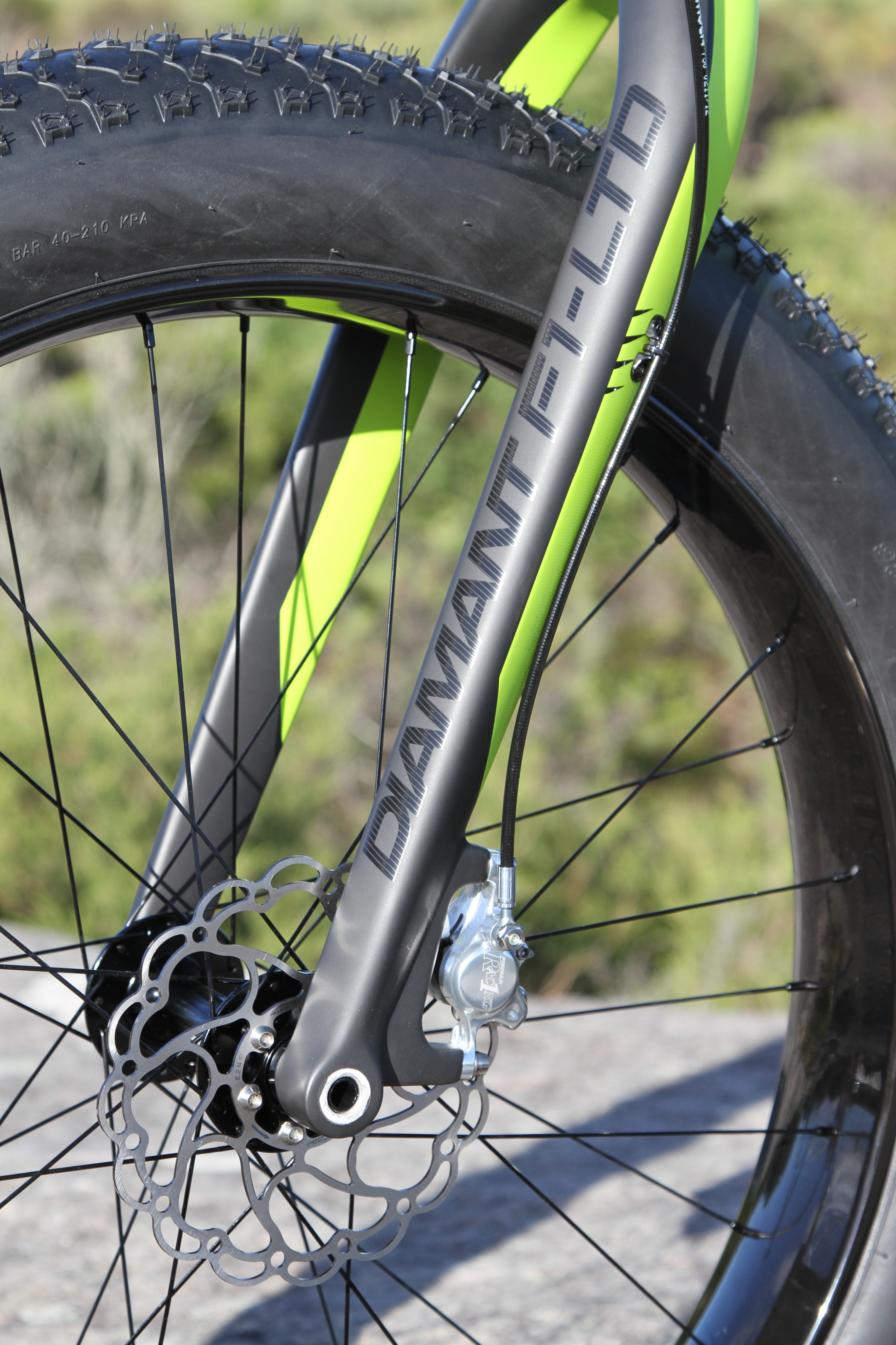 Diamant F1-LTD Fat bike fork